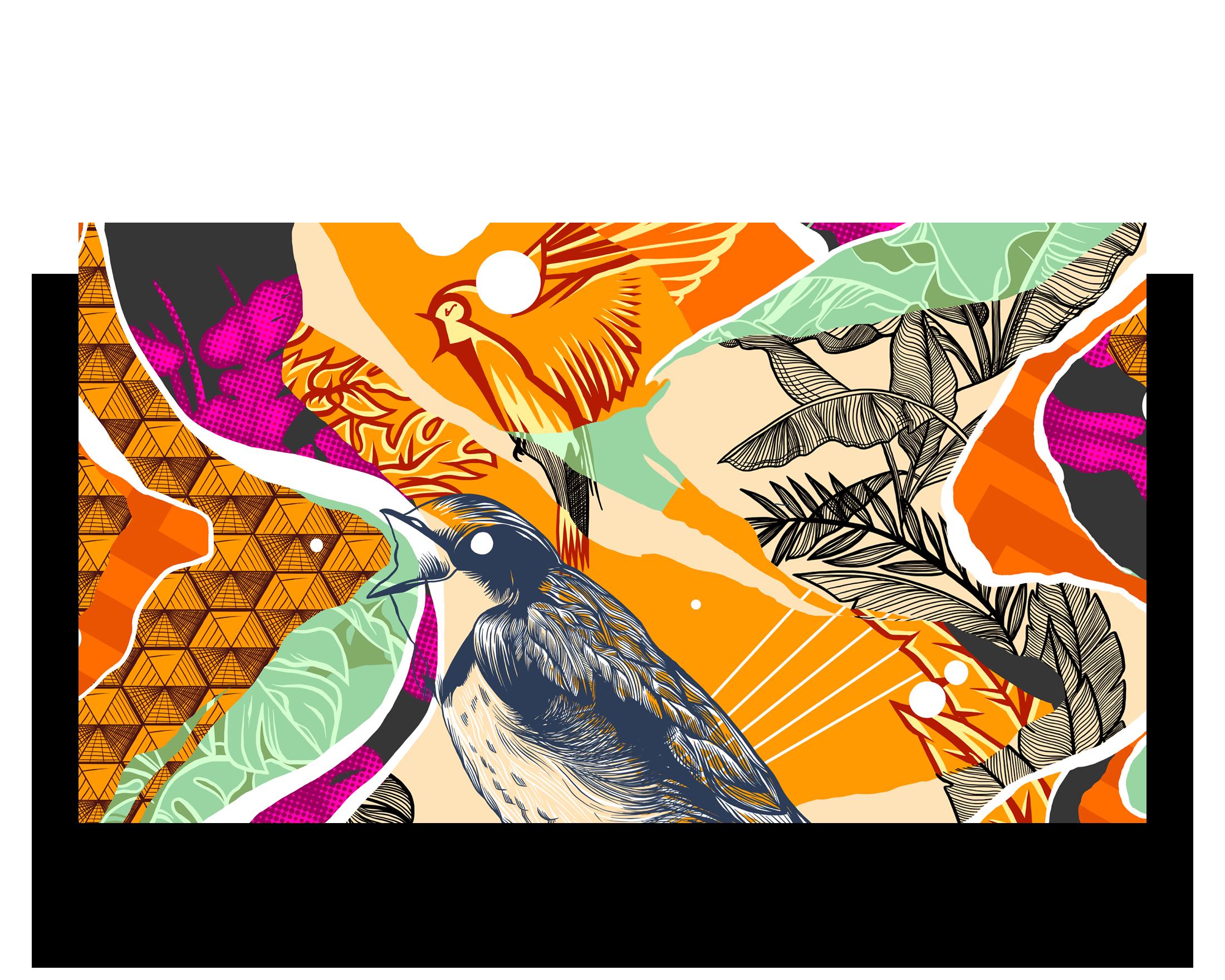 Illustration-Madnes-skate-festival
